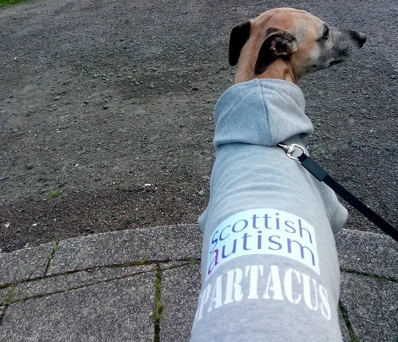 Sparty Dog Jog