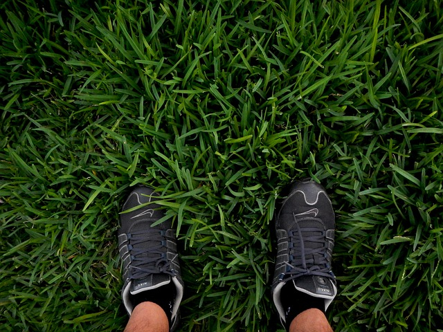 Grey trainers on grass lawn